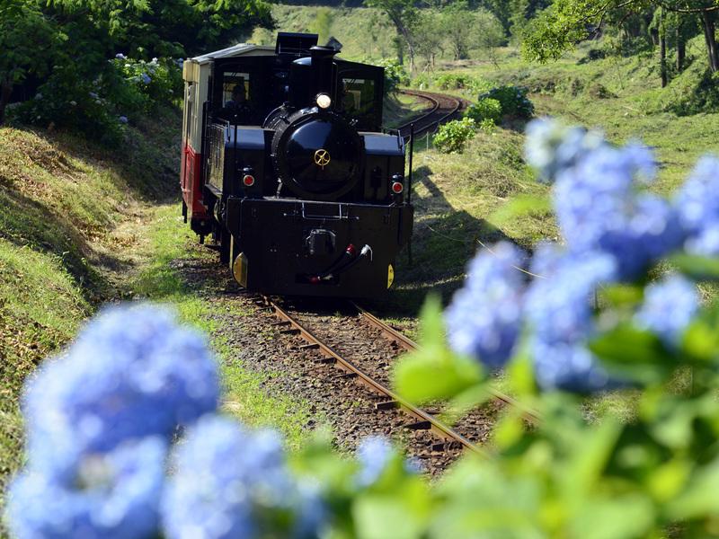 小湊鐵道 里山トロッコ列車/イメージ