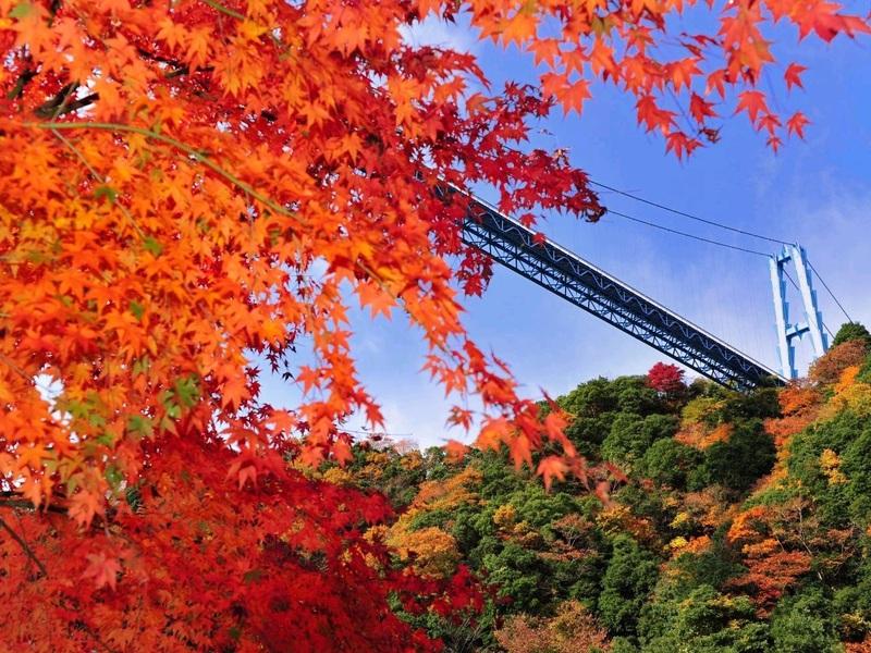 竜神大吊橋/イメージ